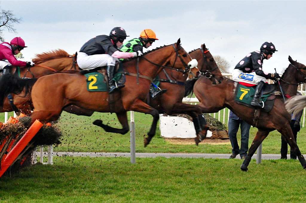 Horse Racing Outsider Of The Day