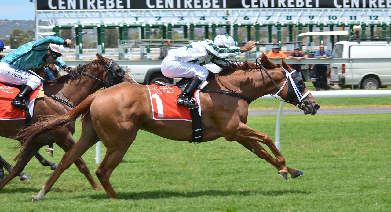 Horse Racing Rule 4