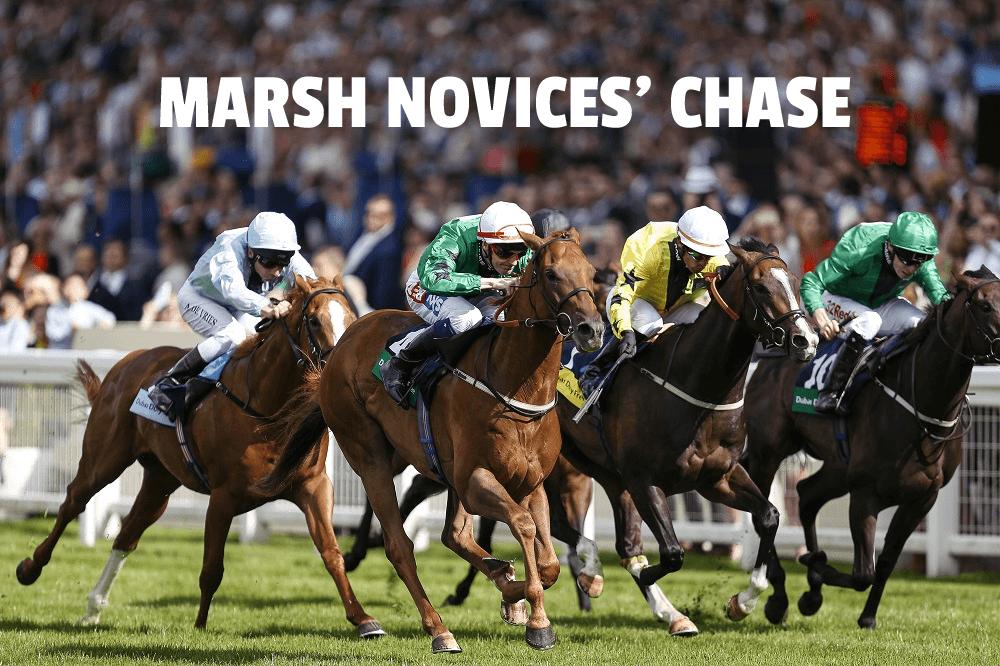 marsh novices' chase