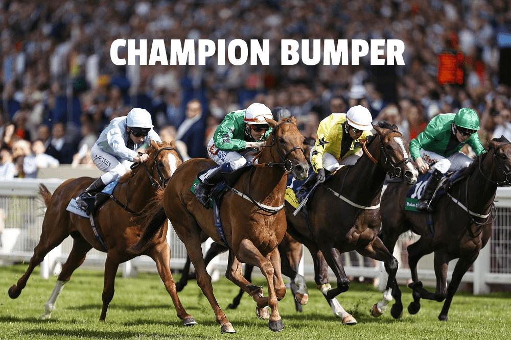 champion bumper