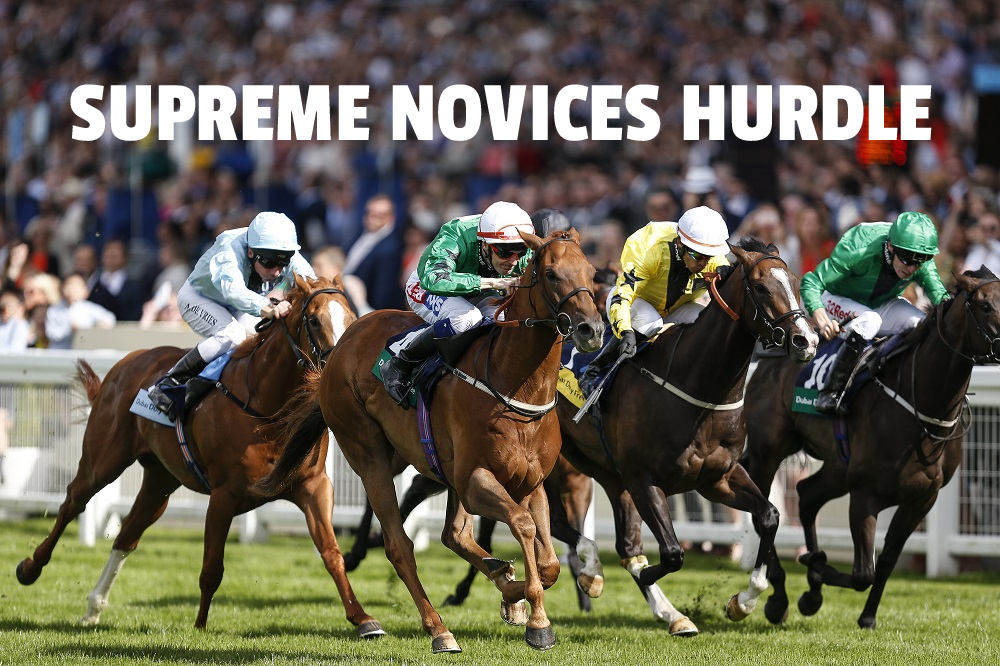 supreme novices hurdle