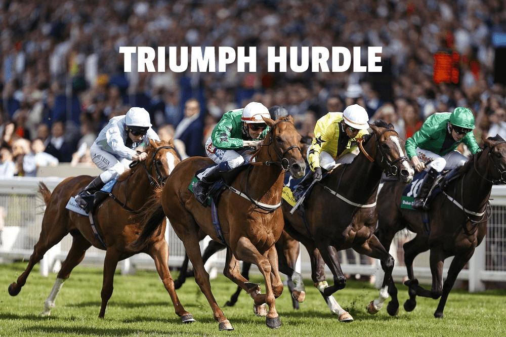 triumph hurdle