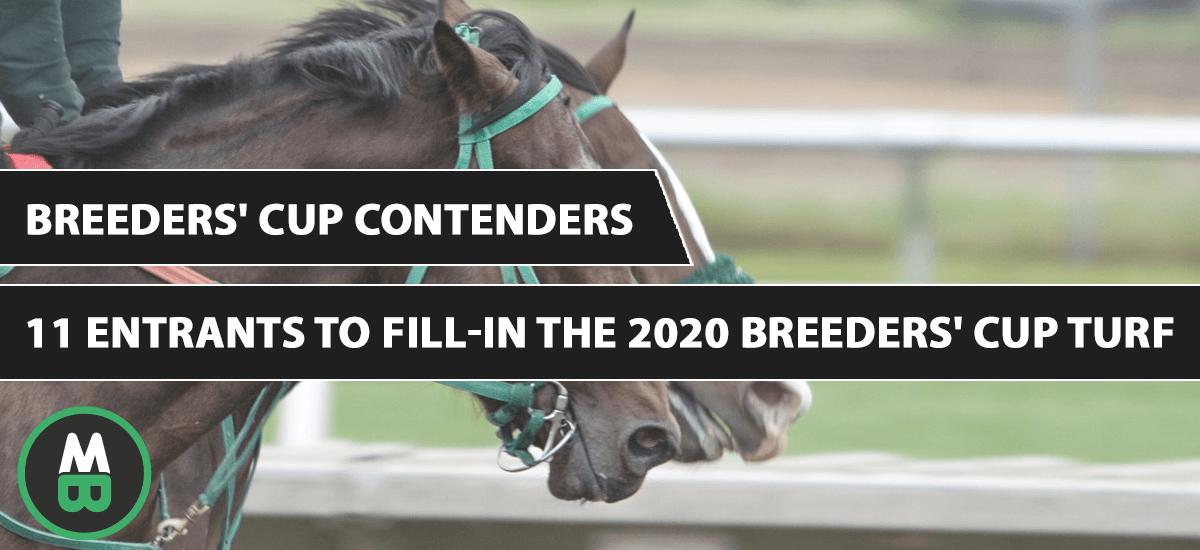 Breeders' Cup Contenders