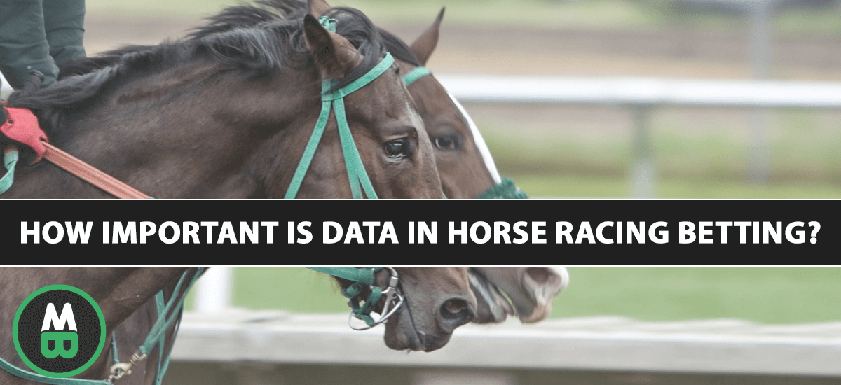 How important is data in horse racing betting?